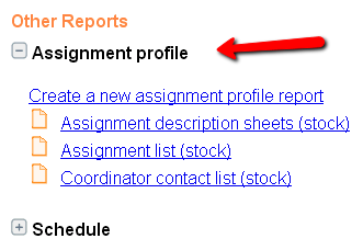 Screen shot of the Print page showing Assignment profiles report