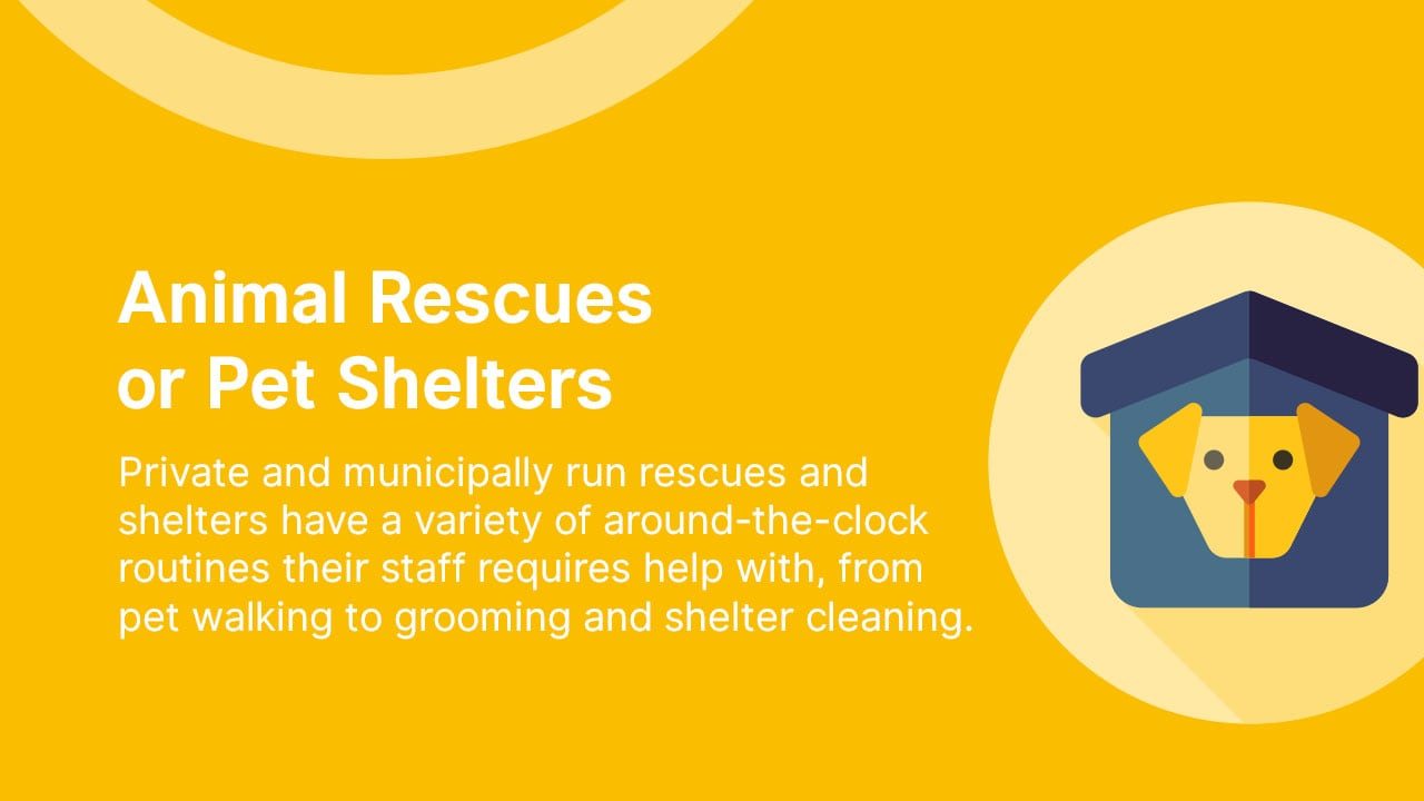 Animal Rescues or Pet Shelters