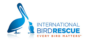 International Bird Rescue Volunteer Application Form-SF Bay