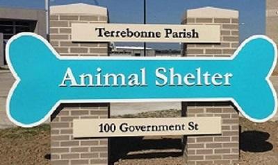 Terrebonne Parish Animal Shelter Volunteer Application Form