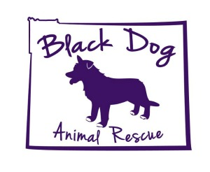 Black Dog Animal Rescue Login