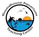 Roundhouse Aquarium Junior Camp Counselor Application Form