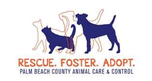Palm Beach County Animal Care & Control Volunteer Application