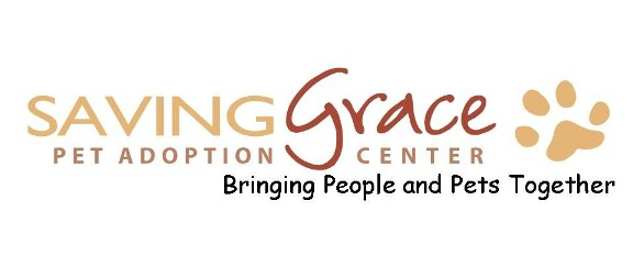 Saving Grace Inc. Foster Care Application