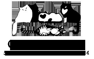 Cat Care Society CAT CARE SOCIETY VOLUNTEER APPLICATION