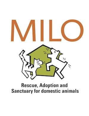 The Milo Foundation Login